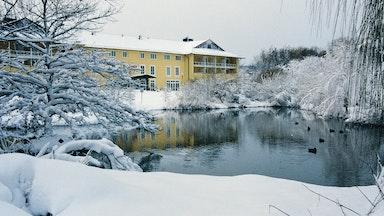 Deidesheim an der Deutschen Weinstrasse: Bild 4