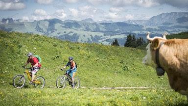 Region Gstaad: Bild 15