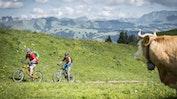 Region Gstaad: Bild 18