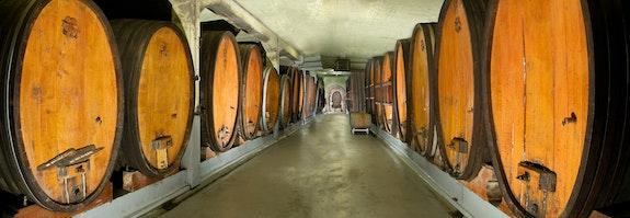 Weinkellerbesichtigung mit Verkostung