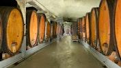 Das Weingut: Bild 2
