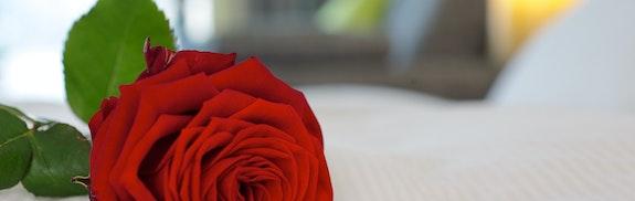 Spécial Saint Valentin à Lucerne