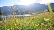 Lenzerheide - die alpine Oase  im Herzen Graubündens: Bild 25