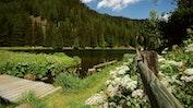 Wanderwunderwelt Davos Klosters: Bild 13