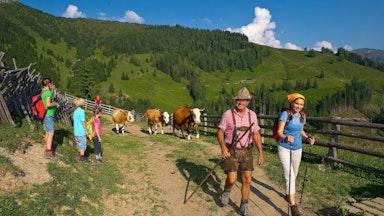 Viel Natur & Zirben-Spa: Bild 15