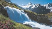 Grindelwald: Bild 20