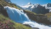 Grindelwald: Bild 19