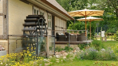 Hotel VILA VITA Anneliese Pohl Seedorf: Bild 6