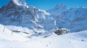 Grindelwald: Bild 23