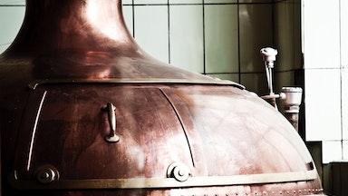 Bier-Degustation: Bild 3