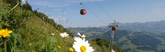 Wanderurlaub in Schönried-Gstaad
