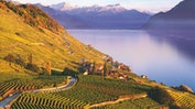 Montreux Riviera - pure Inspiration: Bild 17