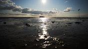 Urlaub in Nordfriesland: Bild 22