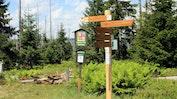 Bayerische Wald: Bild 15