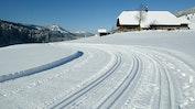 Winter Aktivitäten: Bild 10