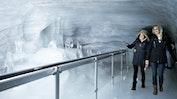 Jungfraujoch mit Sphinx: Bild 24