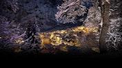 *****Hotel Les Sources des Alpes: Bild 9
