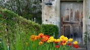 Prächtige Gärten: Bild 18