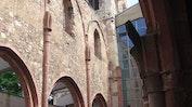 Stadt Mainz: Bild 8
