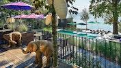 Ein Resort - vier kulinarische Welten: Bild 17