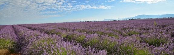 La Provence - paradis naturel