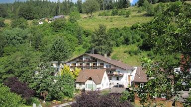 Schwarzwaldnatur: Bild 18