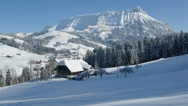 Winter Aktivitäten: Bild 3