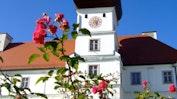 Schloss Hohenkammer: Bild 8
