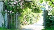 Prächtige Gärten: Bild 22