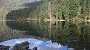 Bayerische Wald: Bild 18