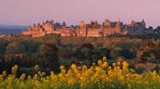 Carcassonne: Image 13