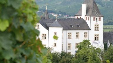 Schloss Residenz: Bild 2