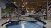 aquabasilea - vielfältigste Wellness-Welt der Schweiz: Bild 16